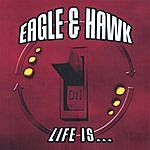 Eagle & Hawk Life Is...