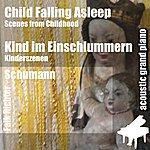 Robert Schumann Child Falling Asleep ( Scenes From Childhood ) [Feat. Falk Richter]