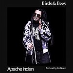 Apache Indian Birds And Bees