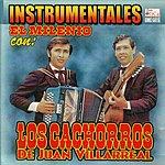 Los Cachorros De Juan Villarreal Instrumentales El Milenio