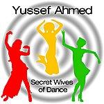 Yussef Ahmed Secret Wives Of Dance (Single)