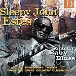 Sleepy John Estes Someday Baby Blues