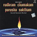 Prof.Thiagarajan & Sanskrit Scholars Rudhram Chamakam Purusha Suktham