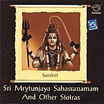 Prof.Thiagarajan & Sanskrit Scholars Sri Mrytunjaya Sahasranamam And Other Stotras