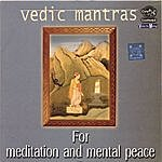 Prof.Thiagarajan & Sanskrit Scholars Vedic Mantras For Meditation And Mental Peace