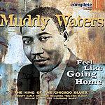Muddy Waters Feel Like Going Home