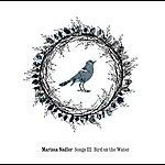Marissa Nadler Songs III: Bird On The Water