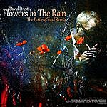 David Priest Flowers In The Rain (Potting Shed Remix)