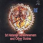 Prof.Thiagarajan & Sanskrit Scholars Sri Nataraja Sahasranamam And Other Stotras