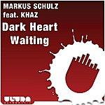 Markus Schulz Dark Heart Waiting