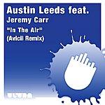 Austin Leeds In The Air (Avicii Remix)