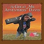 Mr. David The Great Adventures Of Mr. David