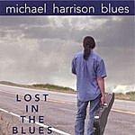 Michael Harrison Lost In The Blues