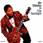 Bo Diddley In The Spotlight