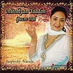 Jaspinder Narula Mitthiyan Yaadan Guzre Pal