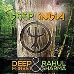 Deep Forest Deep India
