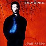 Juan Pardo Gallo De Pelea (2012 Remaster)
