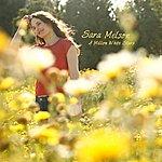 Sara Melson A Million White Stars