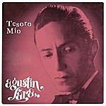 Agustín Lara Tesoro Mío