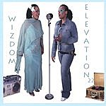 Wizdom Elevation 22
