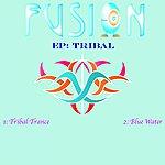 Fusion Tribal