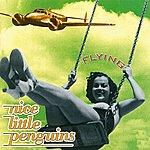 Nice Little Penguins Flying
