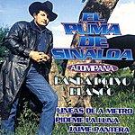 El Puma De Sinaloa Pídeme La Luna