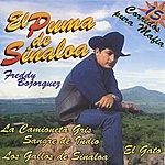 El Puma De Sinaloa 15 Corridos Pura Mafia