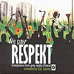Ewa Bem We Pay Respekt - Evergreens From Grey Reality Poland Compiled By Cpt. Sparky