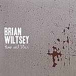 Brian Wiltsey Rain And Flies
