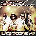 Frank Garcia Raise Your Glass (Featuring Teresa)