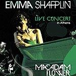 Emma Shapplin Macadam Flower: Live Concert In Athens