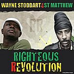 Wayne Stoddart Righteous Revolution