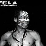 Fela Kuti The Best Of The Black President