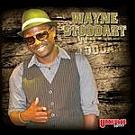 Wayne Stoddart Turn It Around