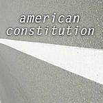 Darius American Constitution