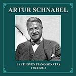 Artur Schnabel Beethoven Piano Sonatas, Vol.3