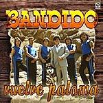 Bandido Vuelve Paloma