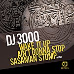 DJ 3000 Wake It Up