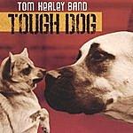 Tom Healey Band Tough Dog
