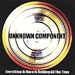 Unknown Component Everything At Once Is Nothing All The Time