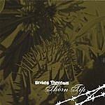 Broken Theremin Thorn Tip
