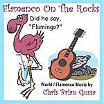 Chris Brian Gussa Flamenco On The Rocks