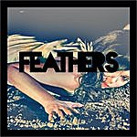 Feathers Land Of The Innocent