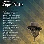 Pepe Pinto Flamenco: Pepe Pinto