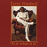 Terry Woolard It Is What It Is