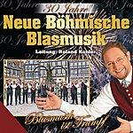 Neue Böhmische Blasmusik 30 Jahre Neue Böhmische Blasmusik