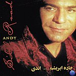 Andy Silk Road