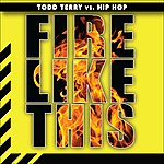 Todd Terry Fire Like This
