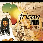 Screwdriver African Union